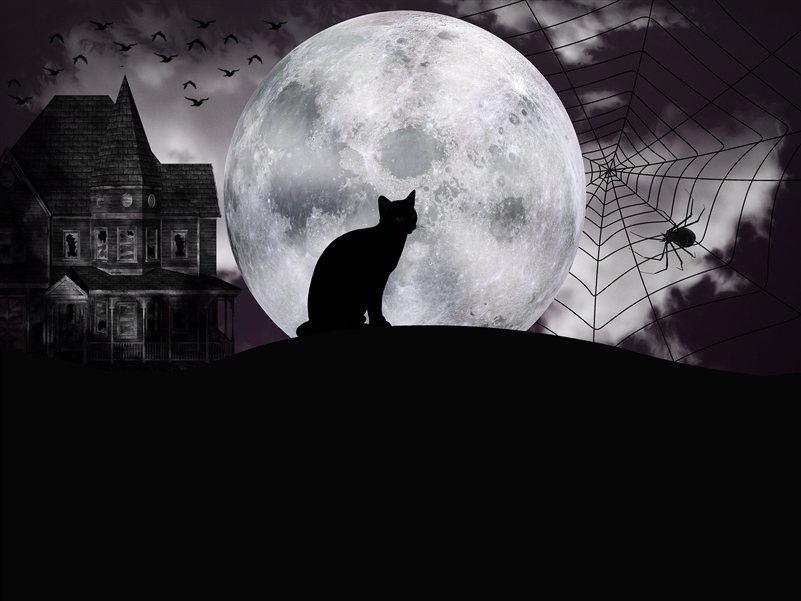 Boise Haunted Halloween Fun 2020 Celebrate the Arrival of October by Visiting Boise Haunted